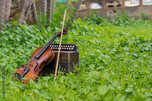 .Violin with accordion Put on the lawn Wait for the party tonight