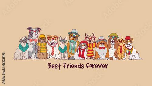 Group fashion best friends pets fun animals card.