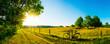 Leinwanddruck Bild - Landschaft im Sommer mit Bäumen und Wiesen bei strahlendem Sonnenschein