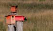 colourfull Birdhouses