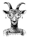 Hand drawn goat hipster - 163257309