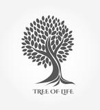 Tree icon or logo