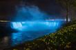 Niagara Falls at Night with Daffodils