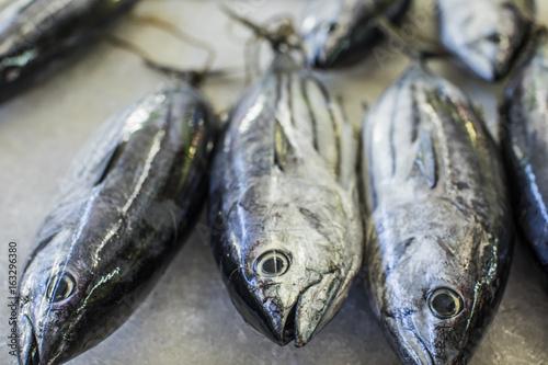 poisson sur marché, polynésie 2017