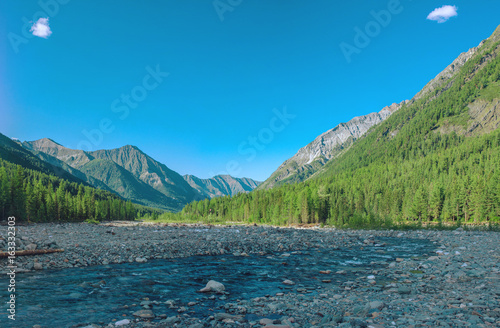 Beautiful view of mountain river among the forest and rocks on the background peaks