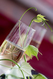 Glass of white wine - 163334552
