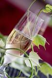 Glass of white wine - 163334568
