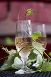 Glass of white wine - 163334913
