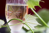 Glass of white wine - 163334949