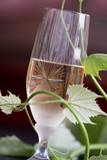 Glass of white wine - 163334960