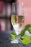 Glass of white wine - 163335139