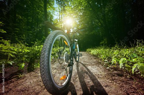 Jechać na dużej prędkości na bicyklu na schodkach w parku