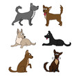 Cute dog set Different breeds of dogs. Vector set of icons. Vector illustration isolated on white, cartoon funny dogs - 163363925