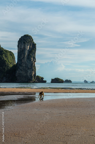 Ao Nang Beach with Lime Stone Formations and Monkey, Krabi, Thailand