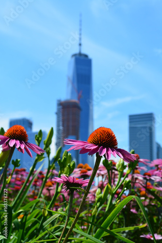 Flowers in bloom in Lower Manhattan. Poster