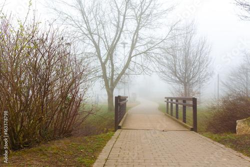 City park at autumn foggy morning