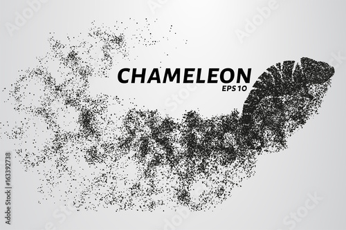 Fototapeta Chameleon particle. The silhouette of a chameleon is made up of little circles.