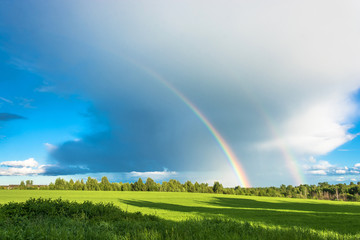 Colorful rainbow over the green field.
