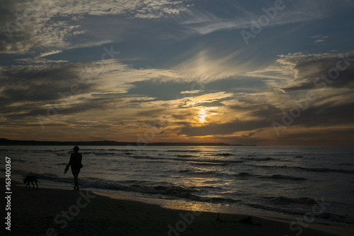 girl walks a dog by the sea in the summer evening