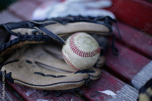 Baseball with leather glove