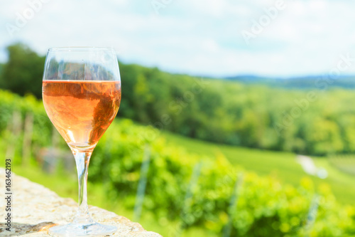 Wine Glass With Vineyard