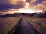 pipeline - 163486579