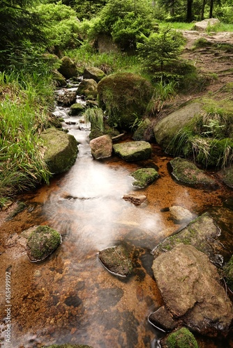 Gebirgsbach bei Schierke am Fuße des Brocken im Nationalpark Harz - 163499192