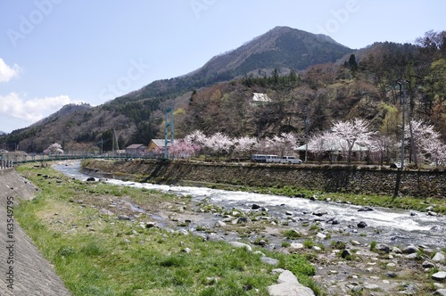 春の道志川と鳥ノ胸山