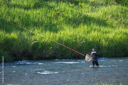 Plagát 鮎の友釣り