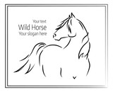 Hand drawn vector illustration of wild horse - 163585172