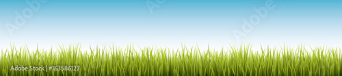 Fresh realistic green grass - vector illustration - 163586127