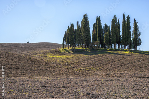 SAN QUIRICO D'ORCIA, TUSCANY / ITALY - OCTOBER 31, 2016: Beautiful tuscan landscape near San Quirico d'Orcia, with rolling hills and tuscan cypress trees. Located in Val D'Orcia countryside - Italy.