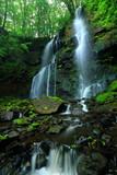 夏の友情の滝