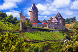 Romantic Rhine Valley river with gorgeous castles. Travel in Germany series - 163647765