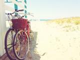 Biciclette al mare