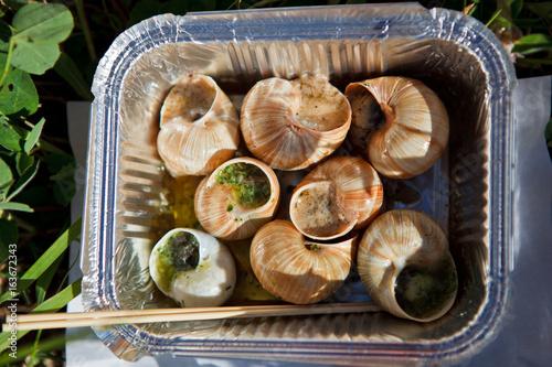 food snails