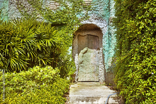 Old door with rusty hinges of the antique stone house overgrown with grape leaves.