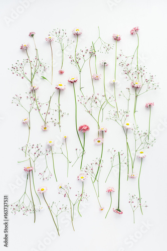 Flowers composition. Pattern made of pink gypsophila flowers and daisy flowers on white background. Flat lay, top view, copy space - 163737531