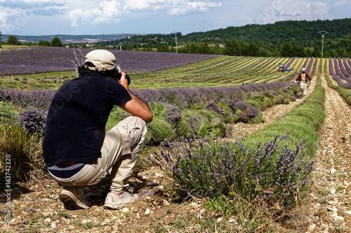 Foto op Canvas Lavendel Photographier champ lavande