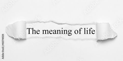 The meaning of life on white torn paper Poster