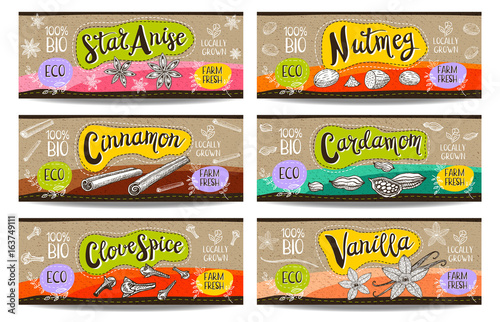 Set of colorful labels sketch style food spices, cardboard texture, horizontal. Cinnamon vanilla, cardamom star anise nutmeg, clove. Spices, vegan food, organic product. Hand drawn vector illustration - 163749111