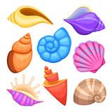 Ocean cockleshells. Cartoon sea shells vector collection