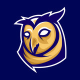 owl mascot logo sports team head