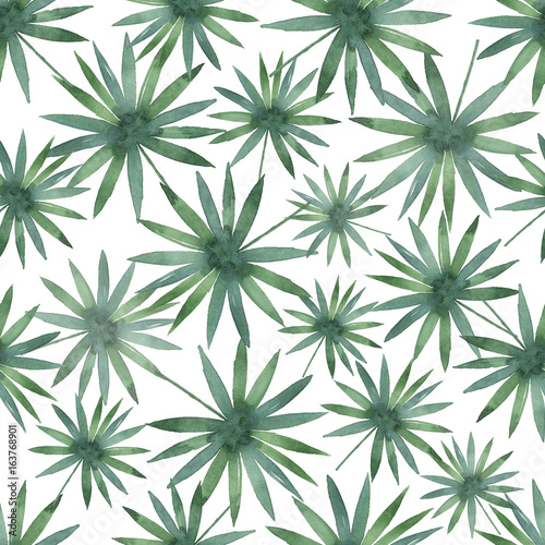 Watercolor seamless pattern with tropical leaves isolated on white background. - 163768901