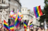 A spectator waves a gay rainbow flag at an LGBT gay pride march in London © ink drop