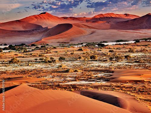 Poster Baksteen desert of namib with orange dunes
