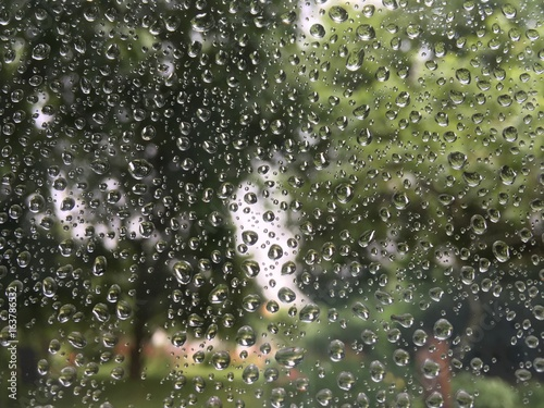 raindrops on a window with view of garden