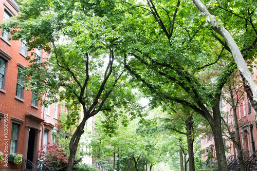 Tree lined residential street in the historic West Village neighborhood of Greenwich Village in Manhattan, New York City