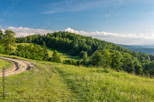 Beskidy mountains, Poland, green sping meadow with dirt road