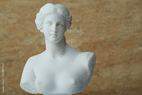 Statue of Aphrodite,ancient greek god of beauty. Poster